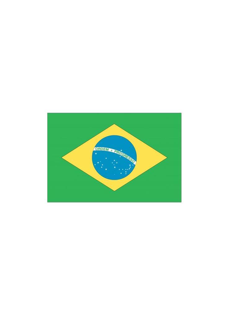 Braziliaanse vlag Sticker