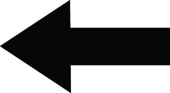 Flecha 19