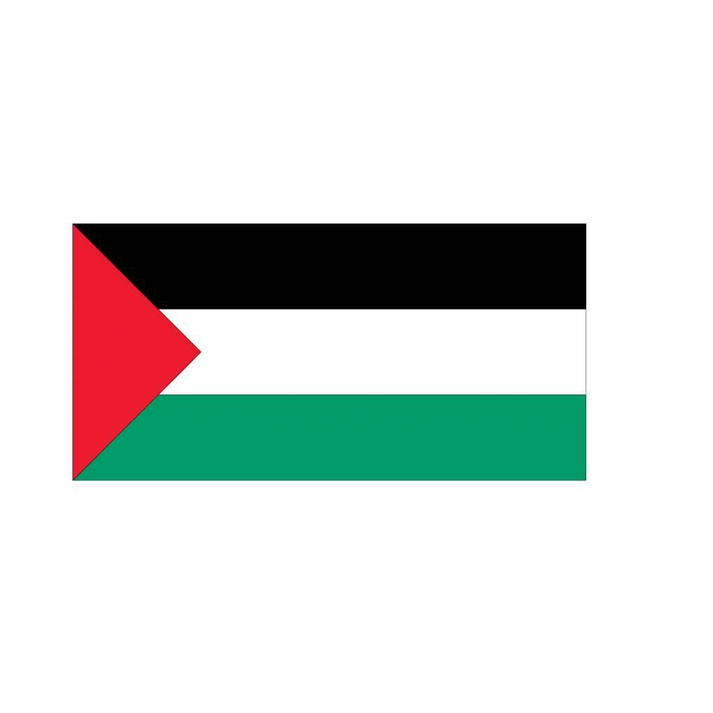 Palestijnse vlag sticker