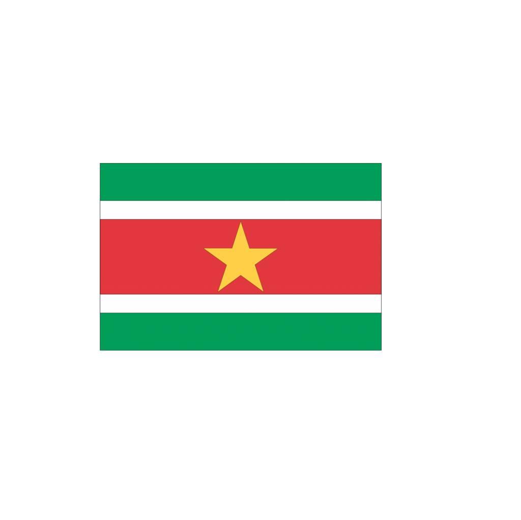 Surinaamse vlag sticker