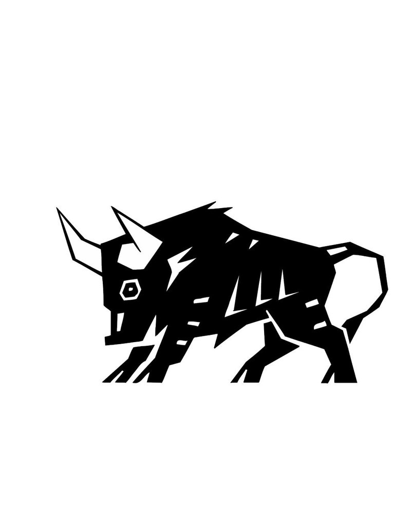 Constelación Toro