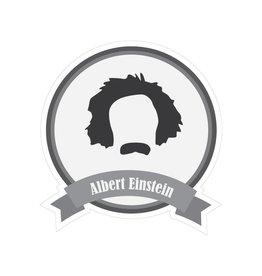 Famous moustaches Einstein Sticker