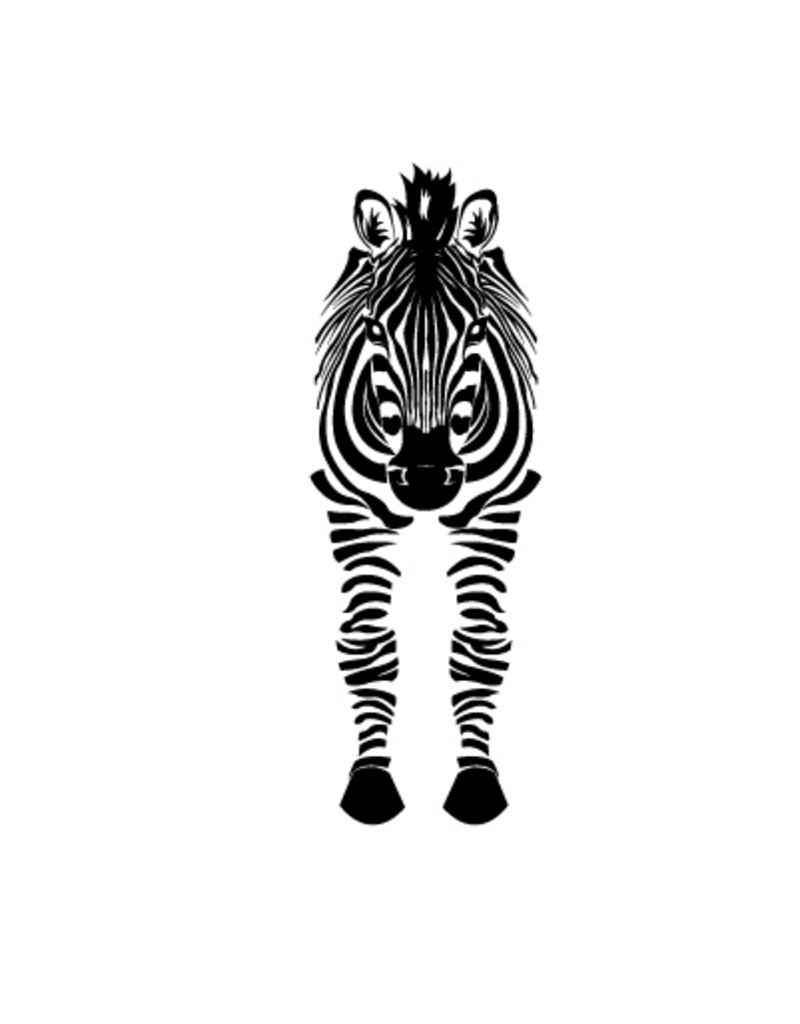 Zebra front view Sticker
