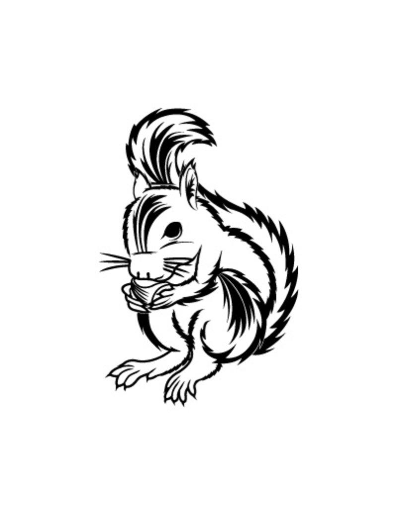 Squirrel Sticker