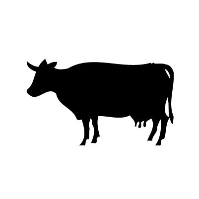 Vache autocollant