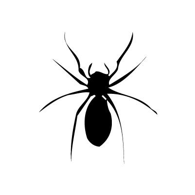 Araignée autocollant