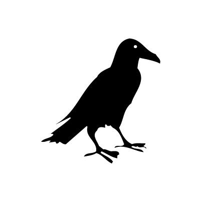 Pájaro 2