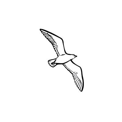 Autocollant oiseau 11