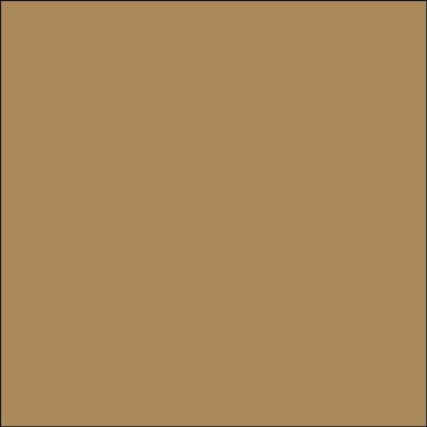Oracal 631: Licht bruin Mat