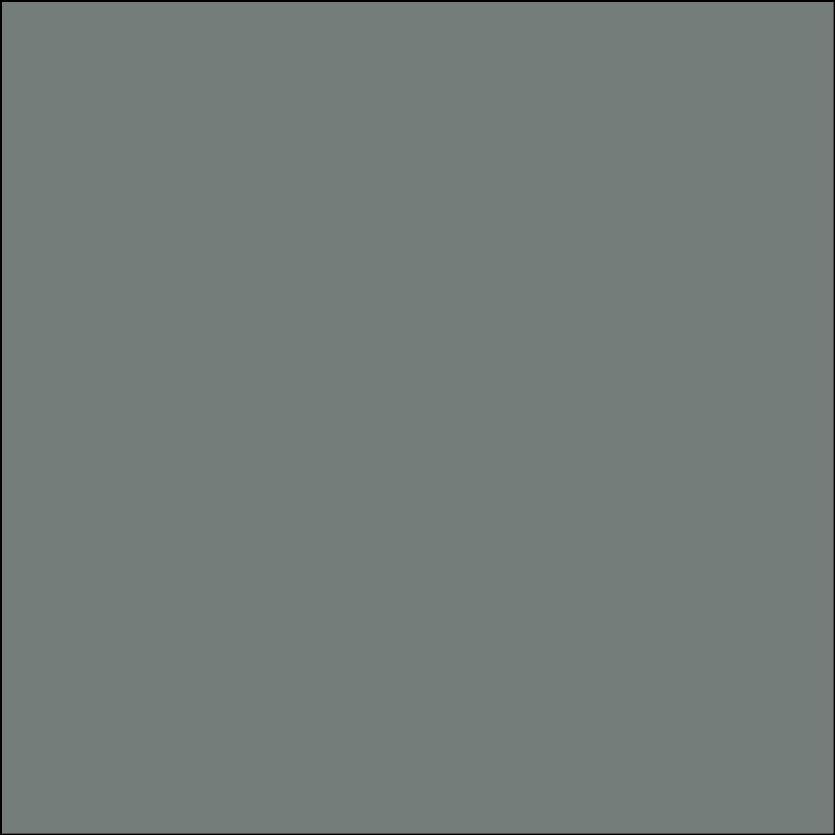 Oracal 651: Grey