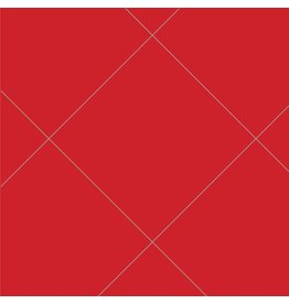 Oralite 5500: Reflective rood