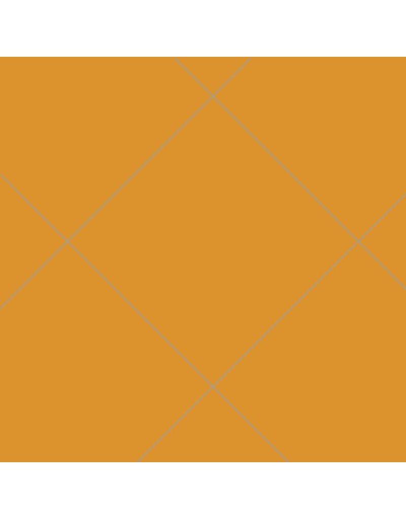 Oralite 5500: Rétro réfléchissant orange