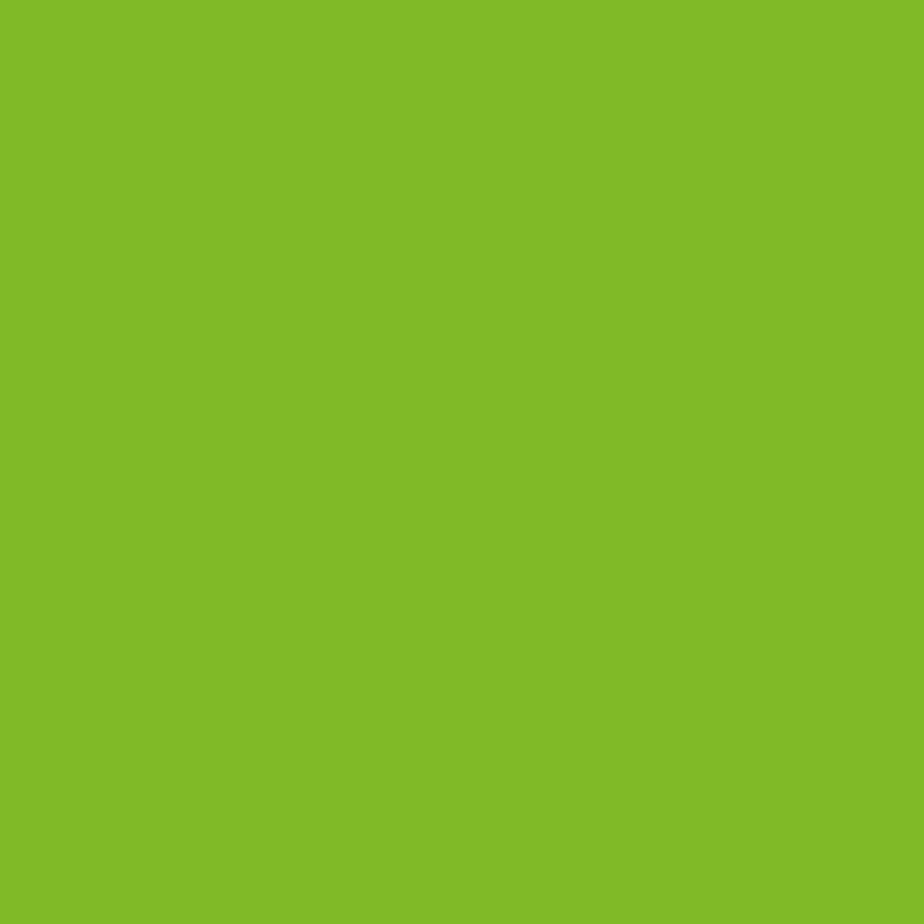 Oracal 6510: Fluorfolie grün