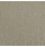 3m 1080: Brushed Titanio