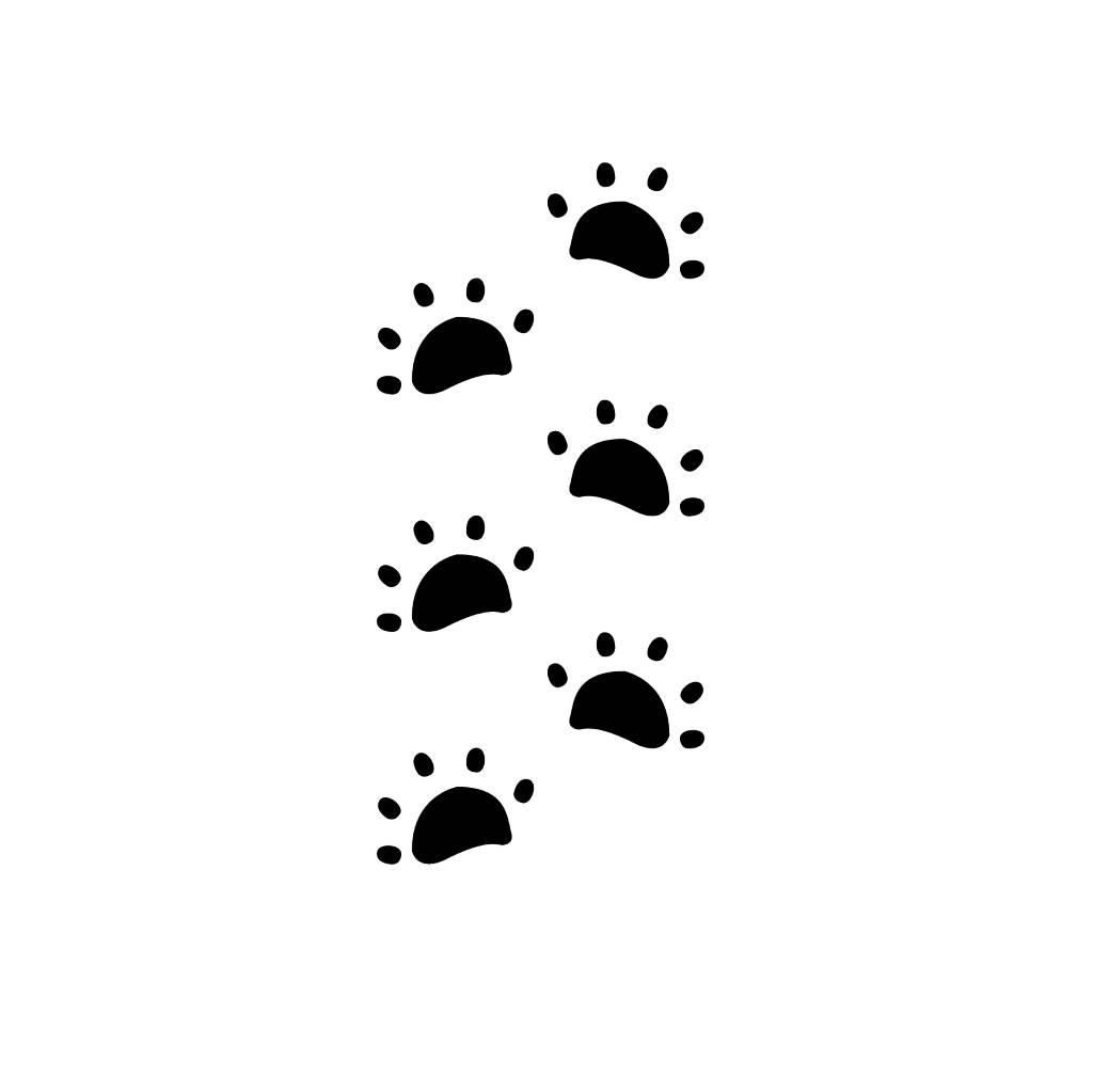 Schildkröte Fußspuren Sticker