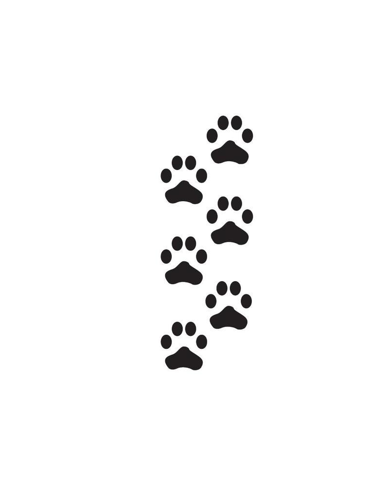 Pies de gatos