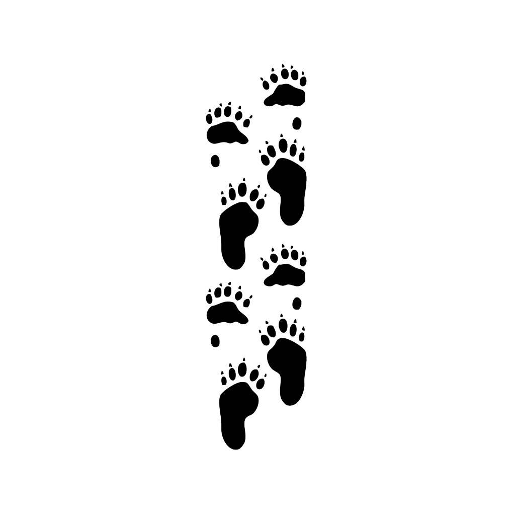 Pies de oso