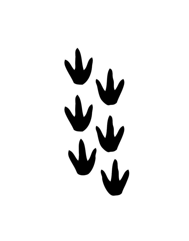 Dinosaurus pootjes