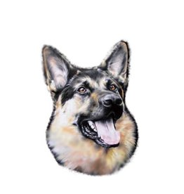Duitse herdershond Sticker