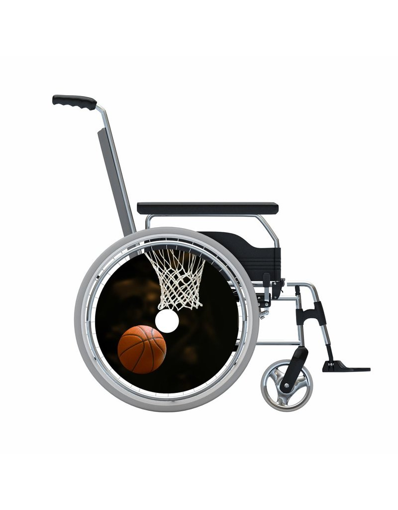 Spoke protector basketball with net