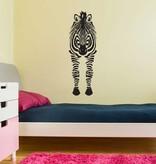 Zebra von vorne Sticker