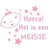 Birth window sticker - Hooray! It is a girl