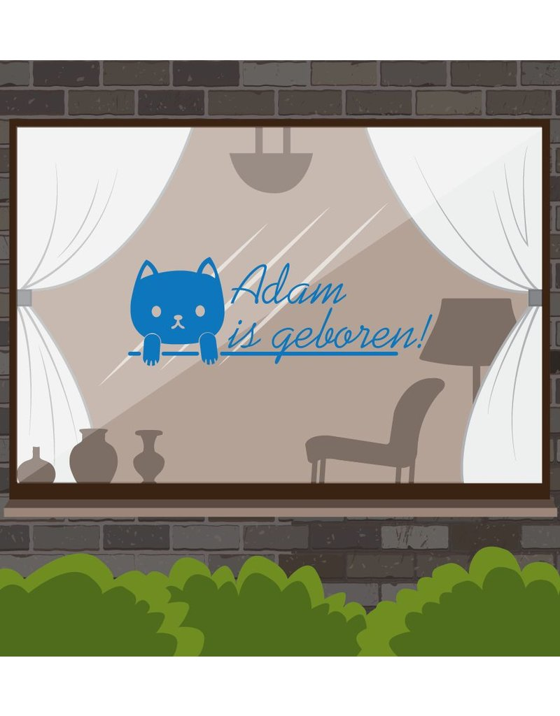 autocollant de la fenêtre de naissance - nom de chaton
