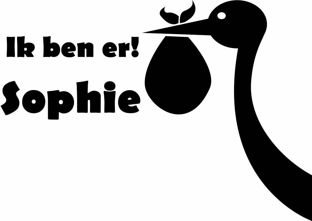 Birth window sticker - Stork with name