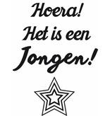 Hoera! It is a Boy! Sticker