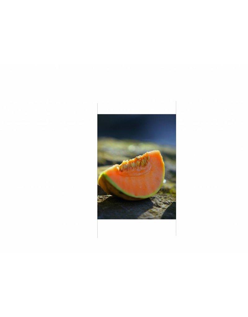 Melon Door sticker