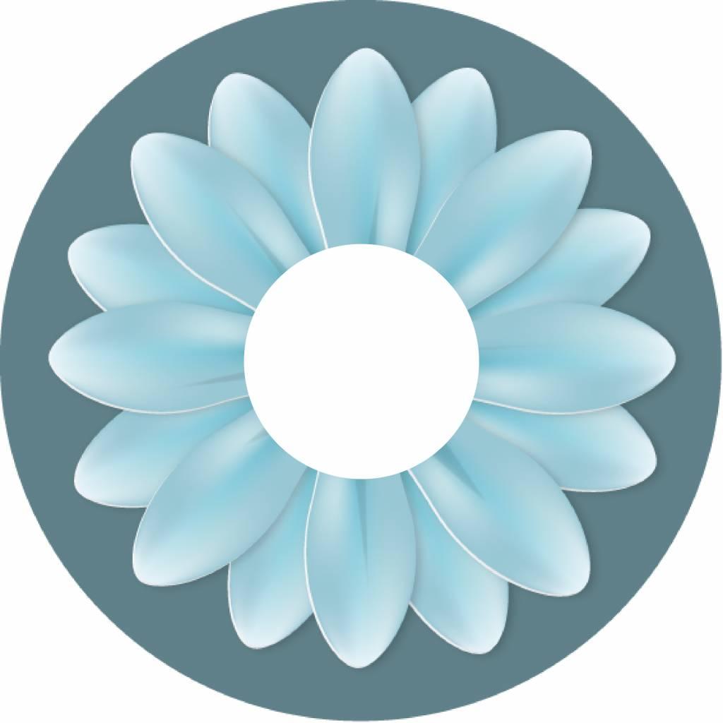 Autocollant protège-rayon grande fleur turquoise