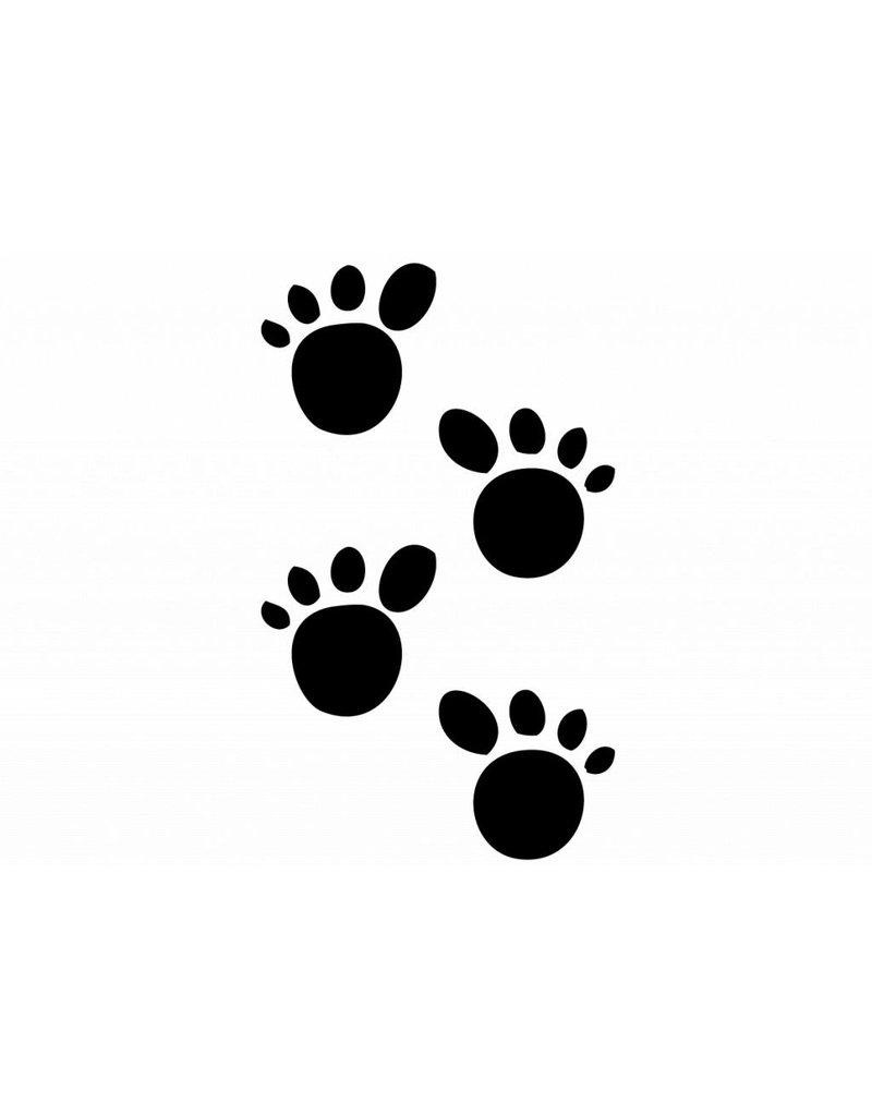 Pattes des animaux ours en peluche