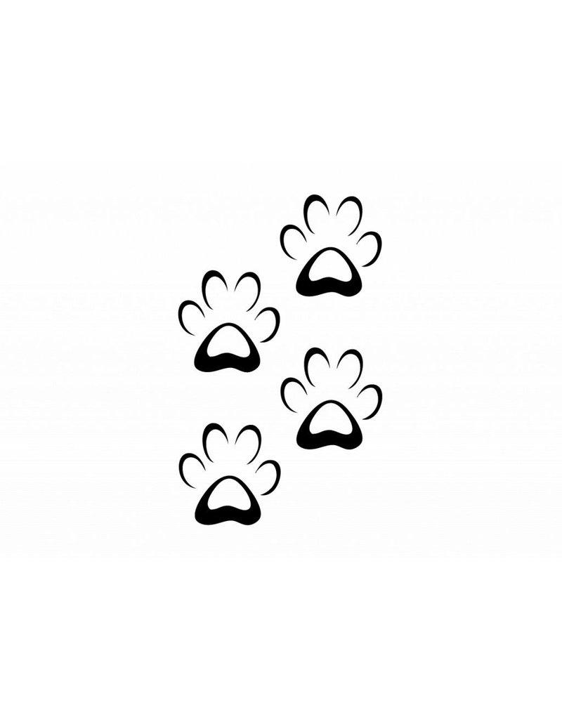 Tierfüße Hund 1