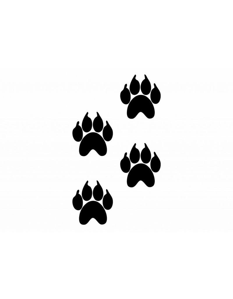 Patas de animales oso