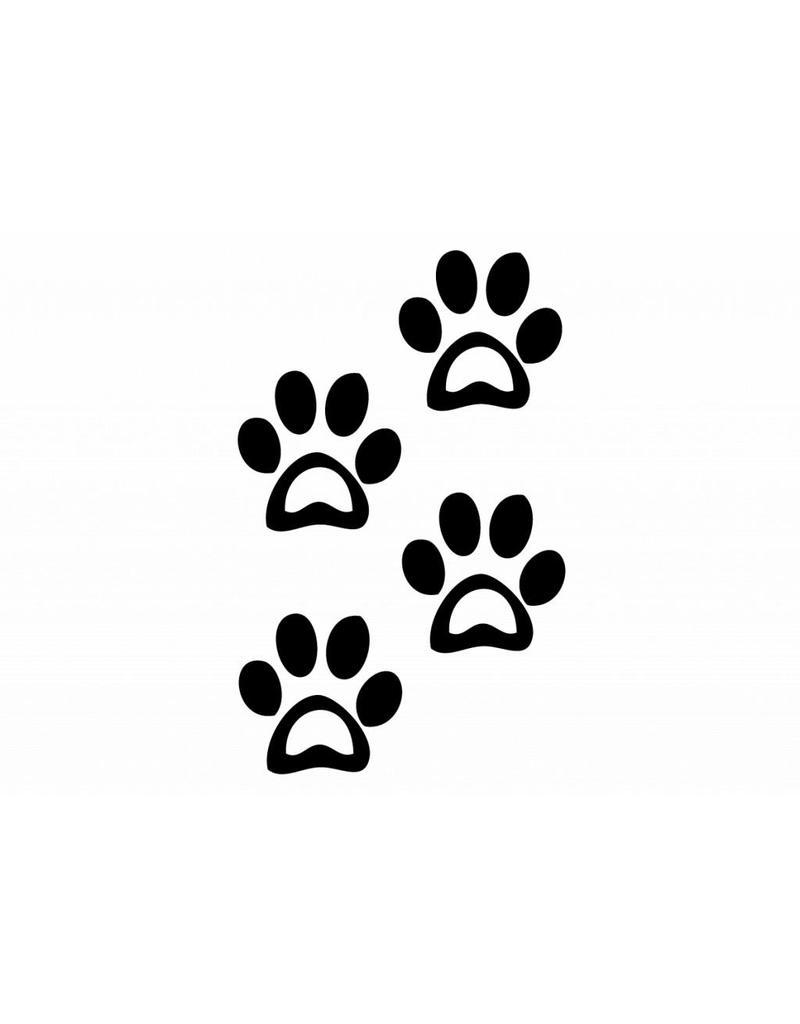Pattes des animaux chien2