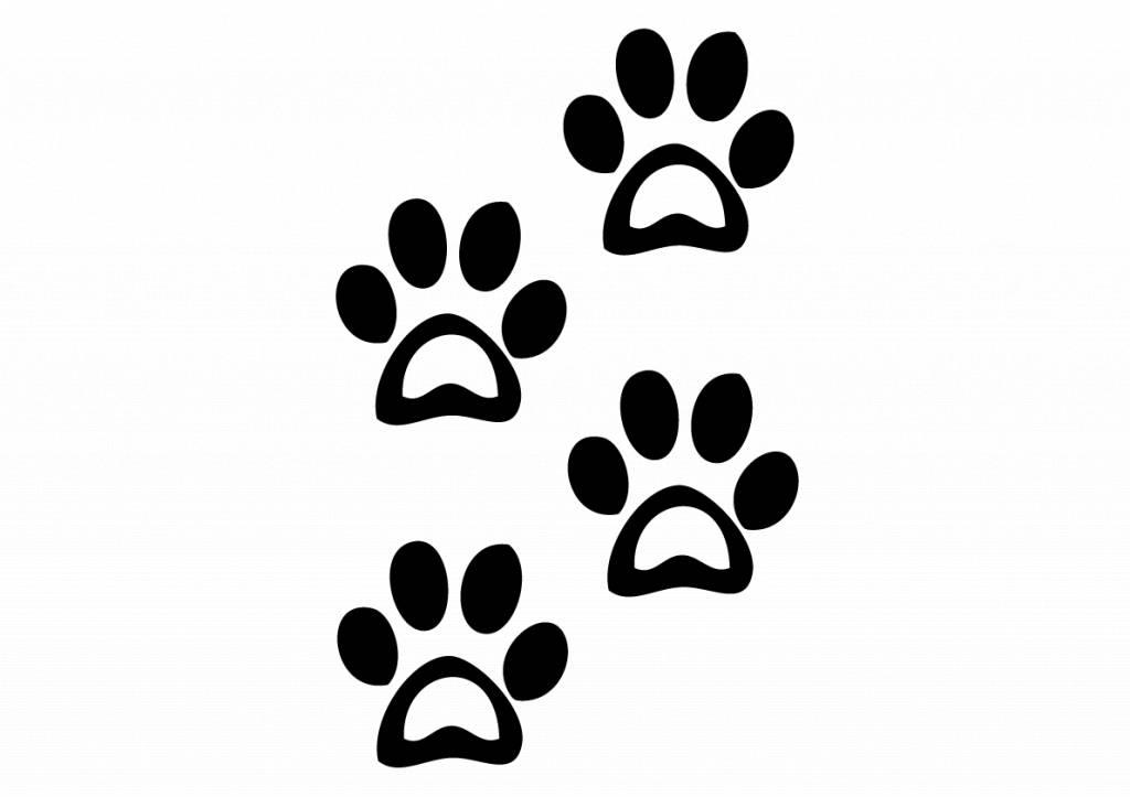 Dierenpoten Hond 2