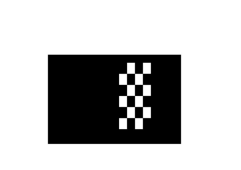 Autocollant de capot drapeau de la course