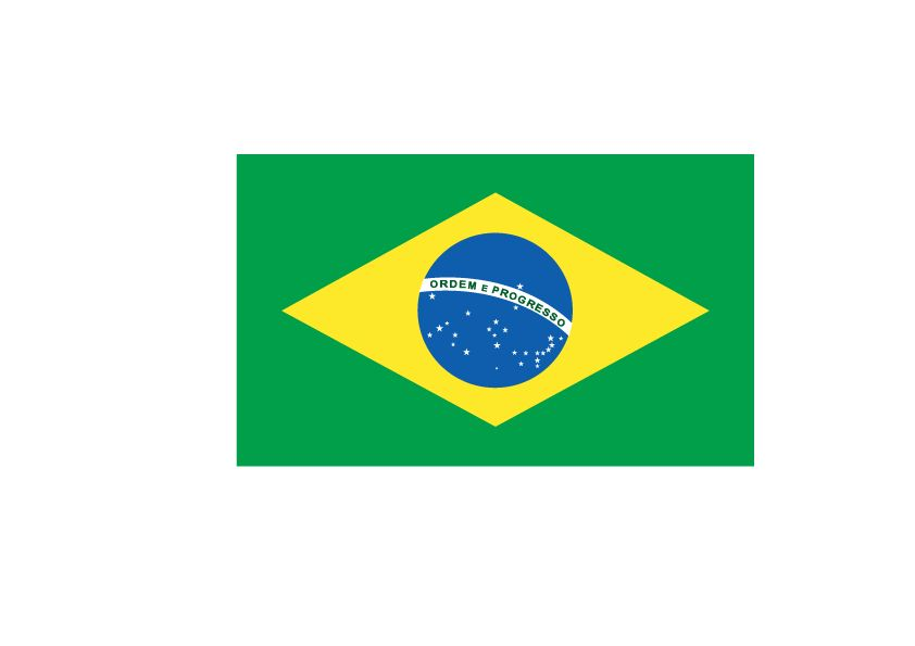 Pegatinas de capot Brasil