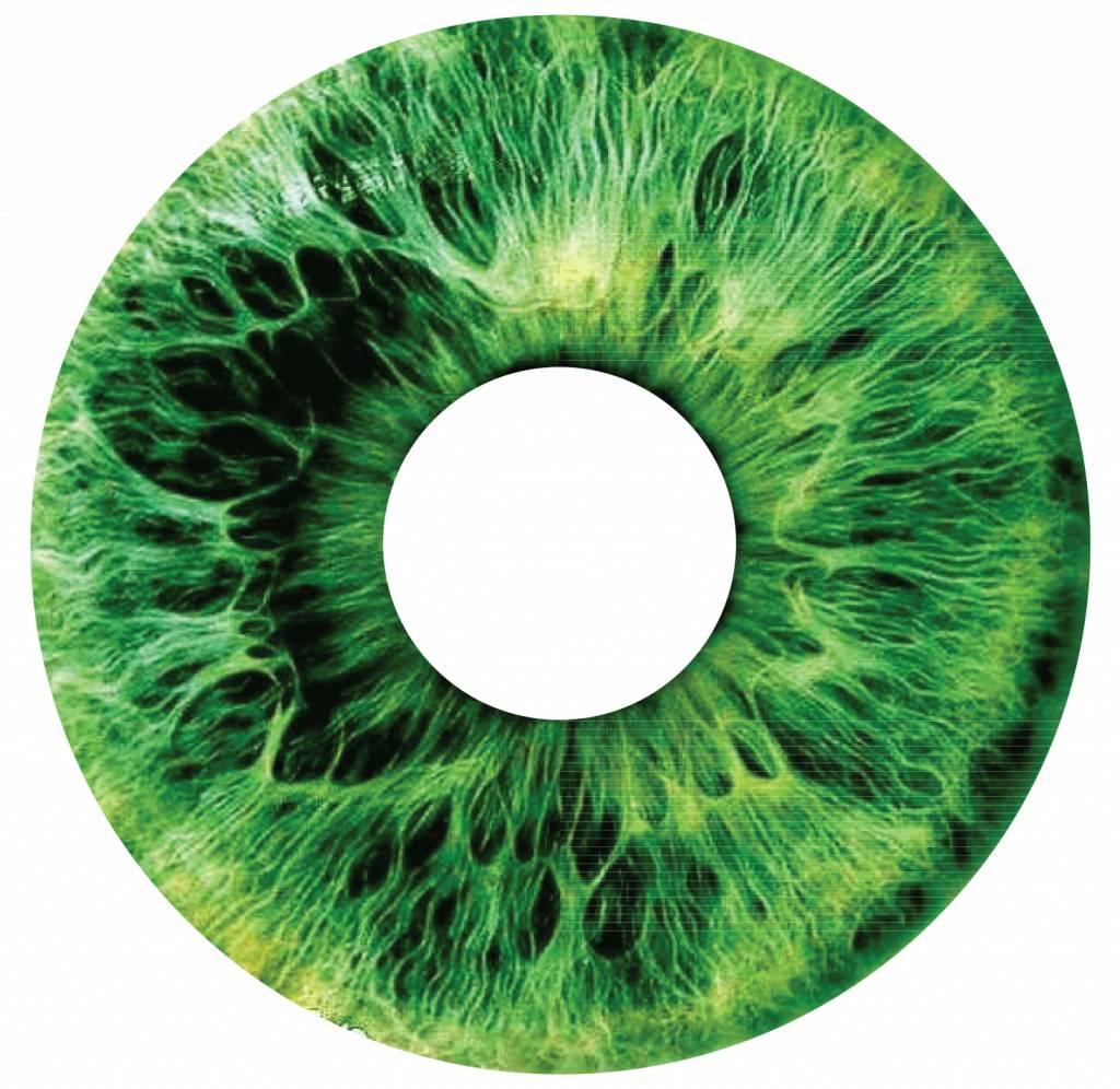 Pegatina protector de radios iris verde