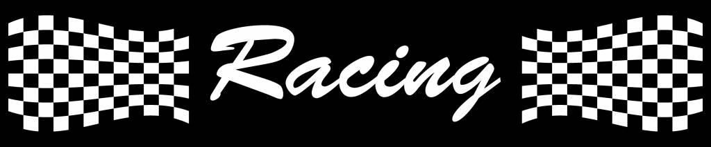 Bandeau pare-soleil voiture racing 1