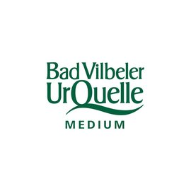 Bad Vilbeler Bad Vilbeler Urquell Medium PET  12 x 1,0