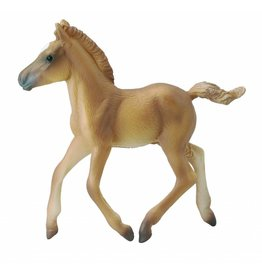 CollectA Haflinger veulen