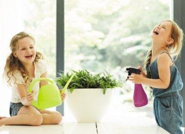 Gieters en plantenverzorging