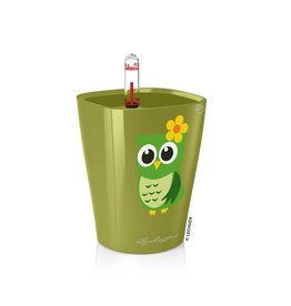 Lechuza Lechuza - Mini Deltini kardemomgroen hoogglans met uil ALL-IN-ONE
