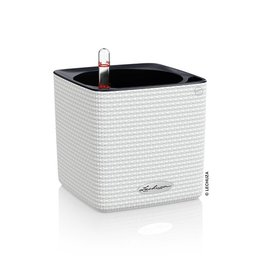 Lechuza Cube Color 14 Wit ALL-IN-ONE