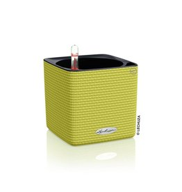 Lechuza Cube Color 14 Limoengroen ALL-IN-ONE