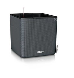 Lechuza Cube LS 35 with PURO Structure Leisteengrijs ALL-IN-ONE