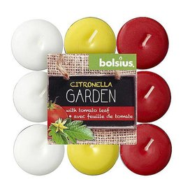 Bolsius Bolsius - Kaars - Theelichtjes - Citronella/Tomatenblad - 30 Branduren
