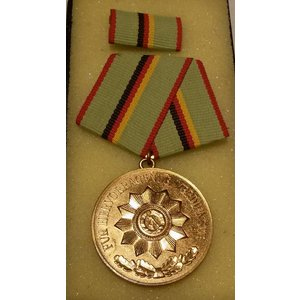 Verdienstmedaille MDI Bronze