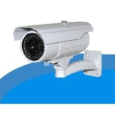 IP Camera's